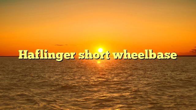 Haflinger short wheelbase