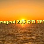 Peugeot 205 GTi 1FM
