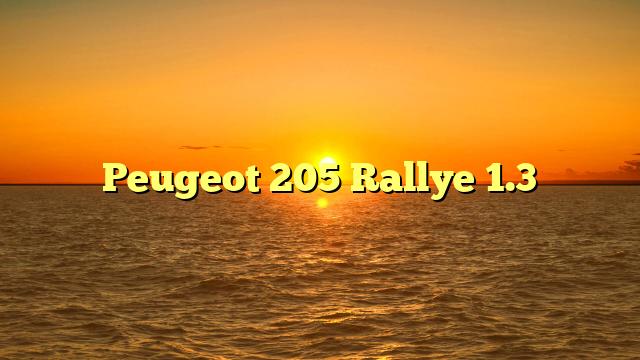 Peugeot 205 Rallye 1.3